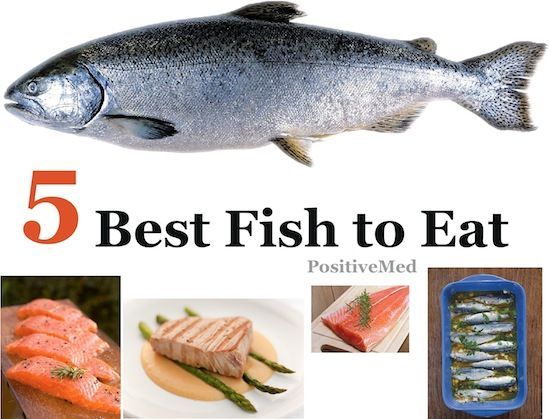 5 best fish to eat fish food and meat for Fish with low mercury
