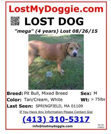 Posted 15 days ago prev next print LOST DOG UPDATE STILL