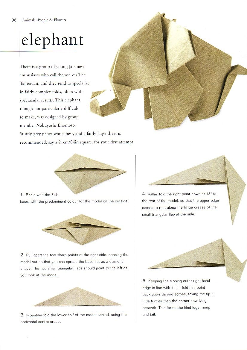 origami tiere anleitung googlesuche origami pinte t. Black Bedroom Furniture Sets. Home Design Ideas