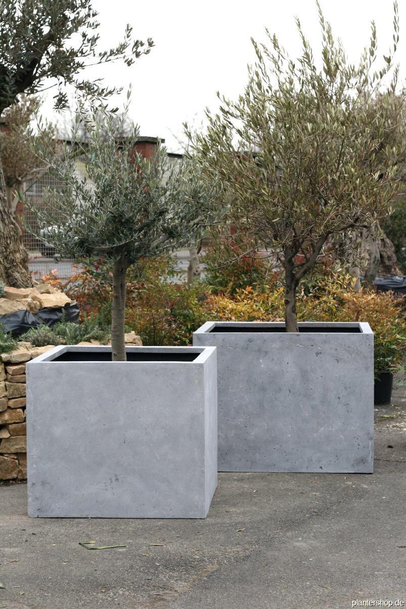 pflanzkübel, blumenkübel, pflanzgefässe in beton- oder