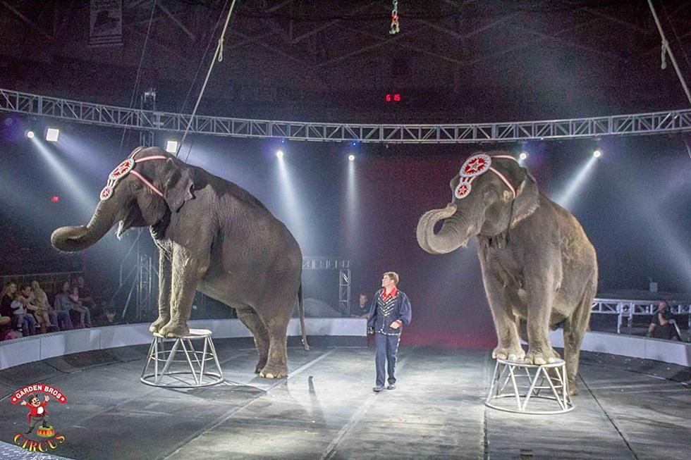Garden Brothers Circus Coming to Budweiser Events Center