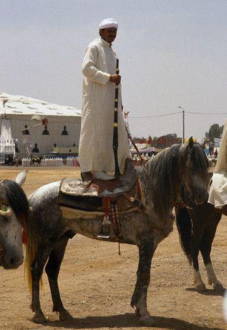 Fantasia Maroc !