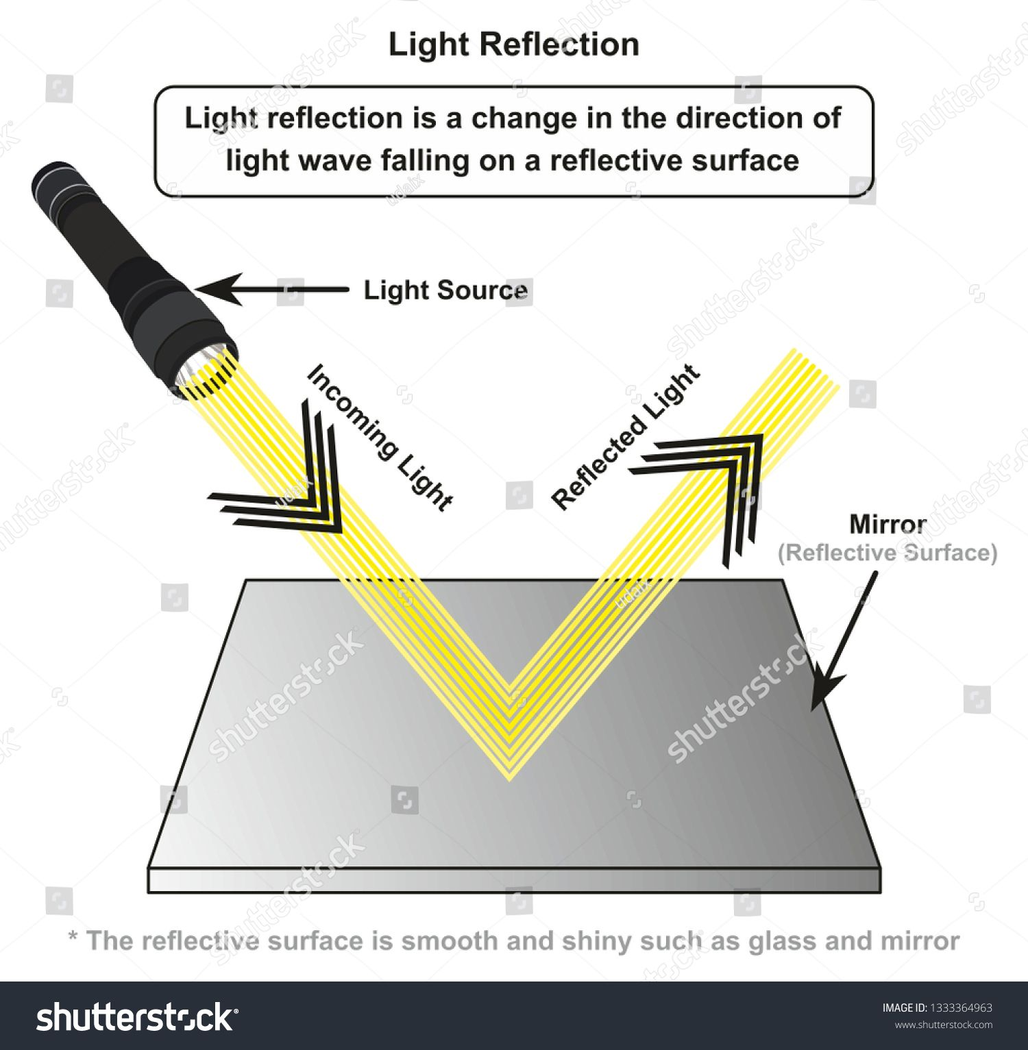 Light Reflection Infographic Diagram With Example Of Light