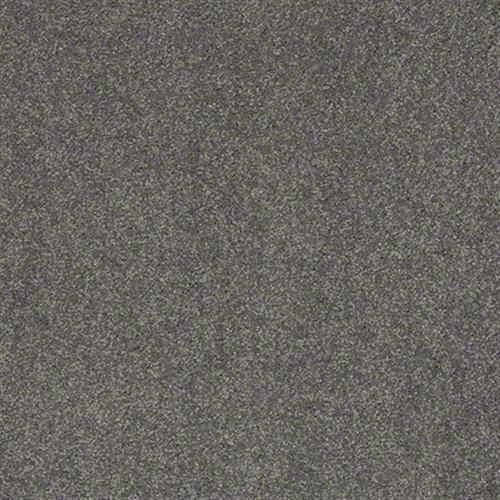 Carpet See The World Iii S Charcoal Carpet Roswell Charcoal