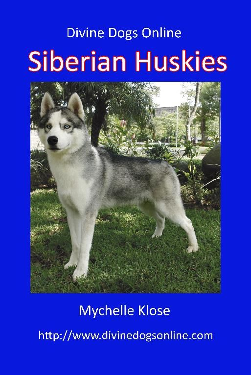 In 1925 A Team Of Siberian Huskies Made Their Way Through A
