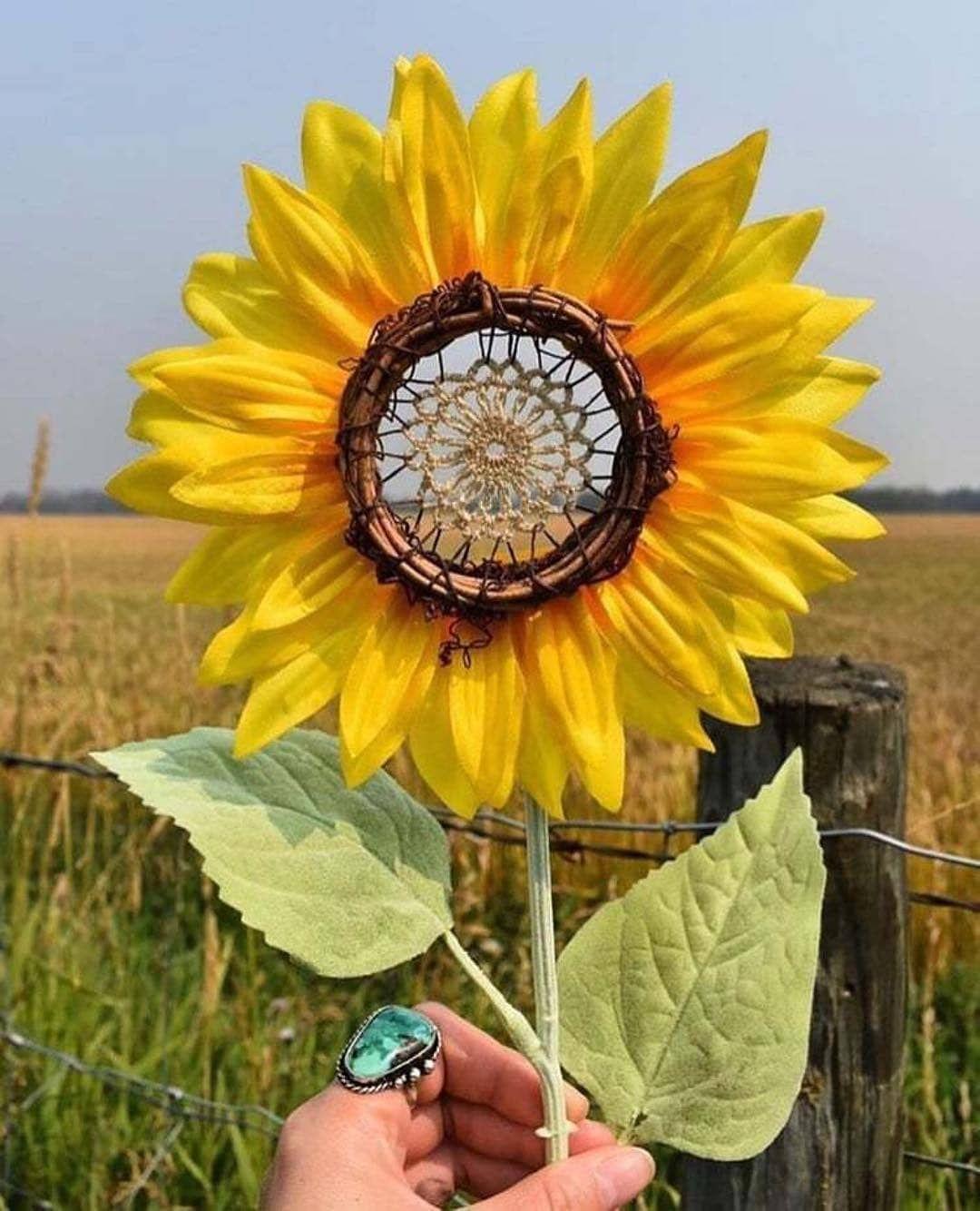 """Inspired Hippie Life on Instagram: """"Sunflower Dreamcatcher"""