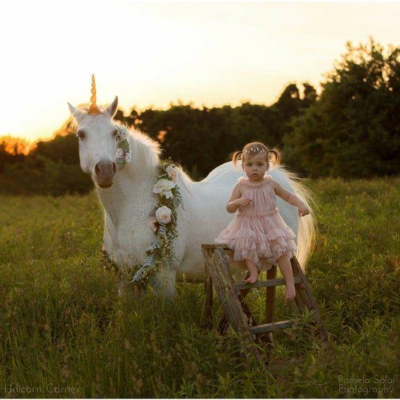 Unicorn Horn for Pony or Horse / unicorn pony party /unicorn birthday party /unicorn pony costume /unicorn photoshoot /horse unicorn costume