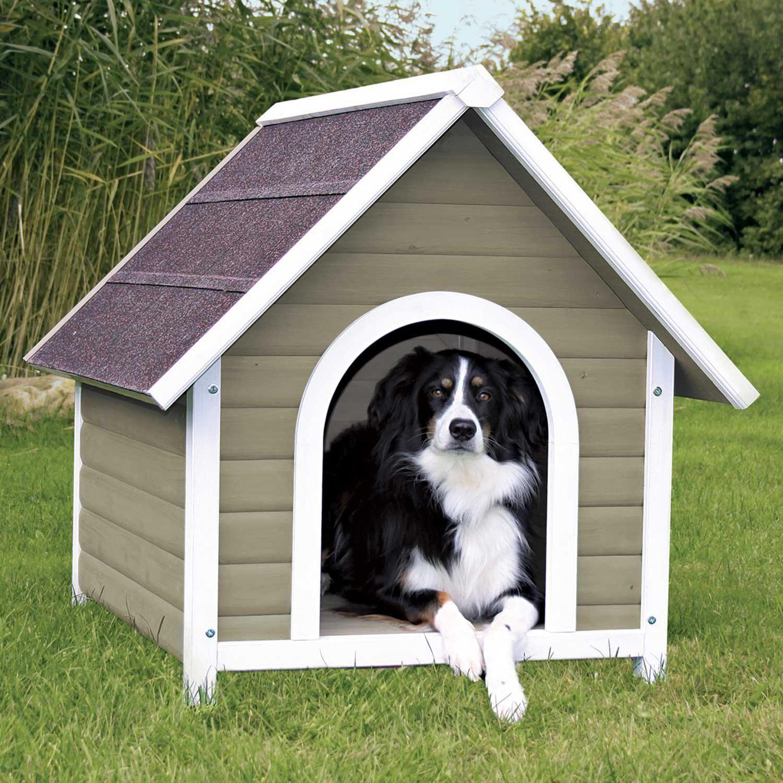 Dogsruletheworld Dogsmakeeverythingbetter Bestdogever Bestdogontheplanetearth Bestdogintheworld In 2020 Dog Kennel Outdoor House Training Dogs Dog House