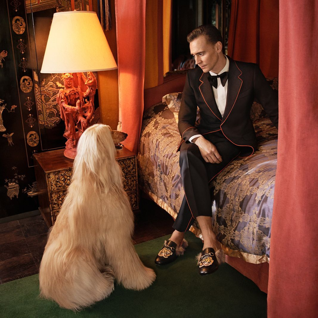 47792befc032f7 Here Are Some Photos Of Tom Hiddleston Wearing Gucci