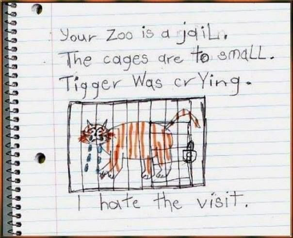 Drawing of a child after visiting a zoo