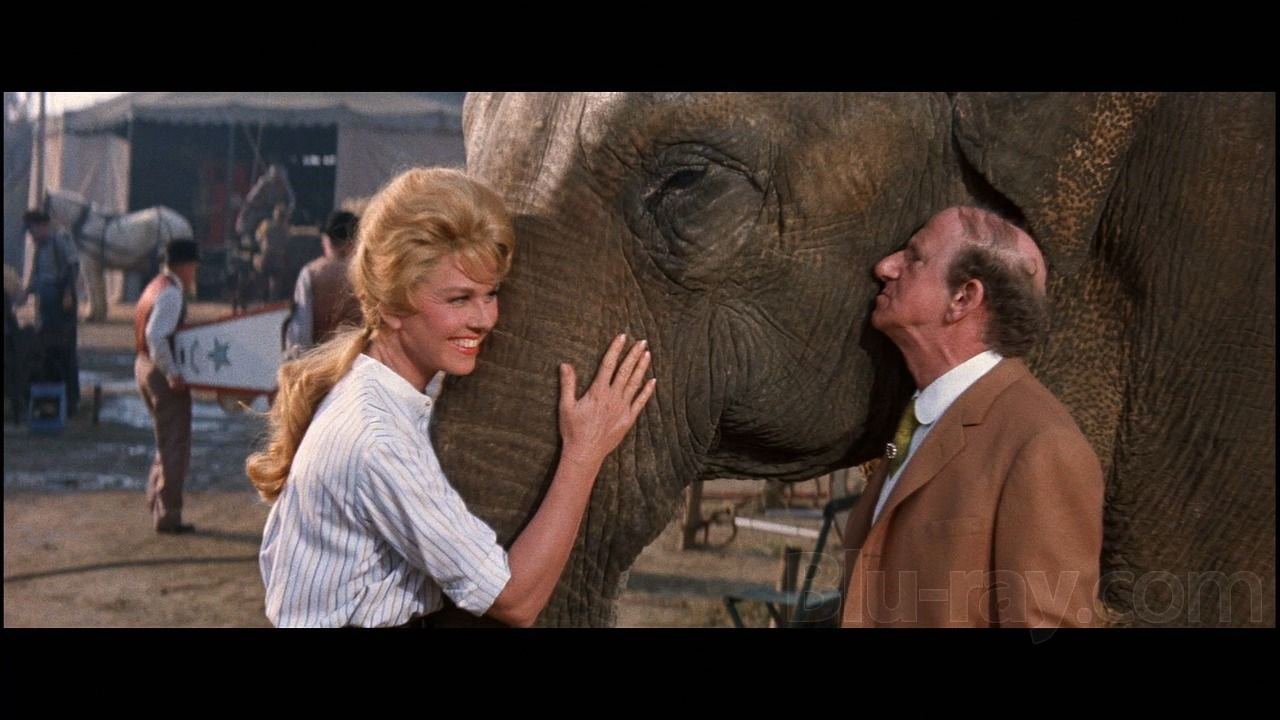 Image result for doris day billy rose's jumbo