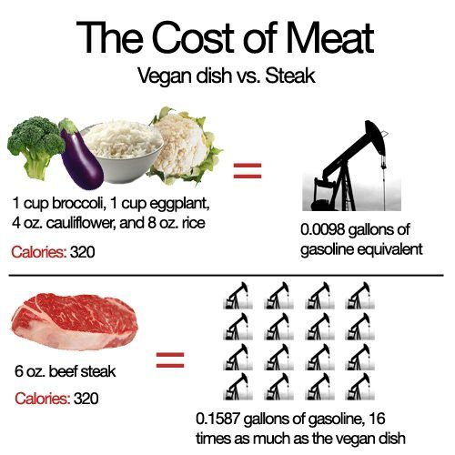 cost of plant based diet