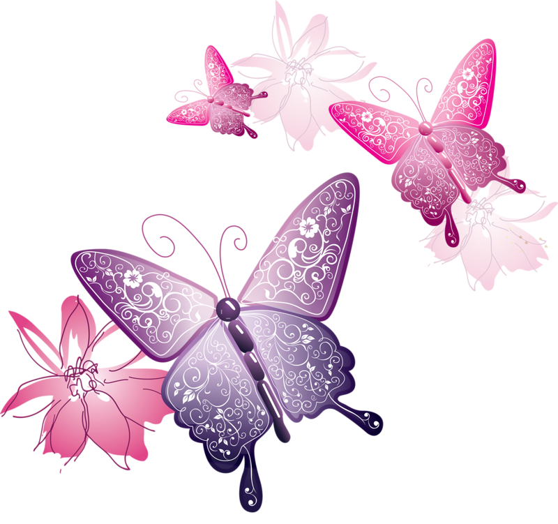 pink butterfly png download number 6742 daily updated decorative border vector art decorative circle border vector