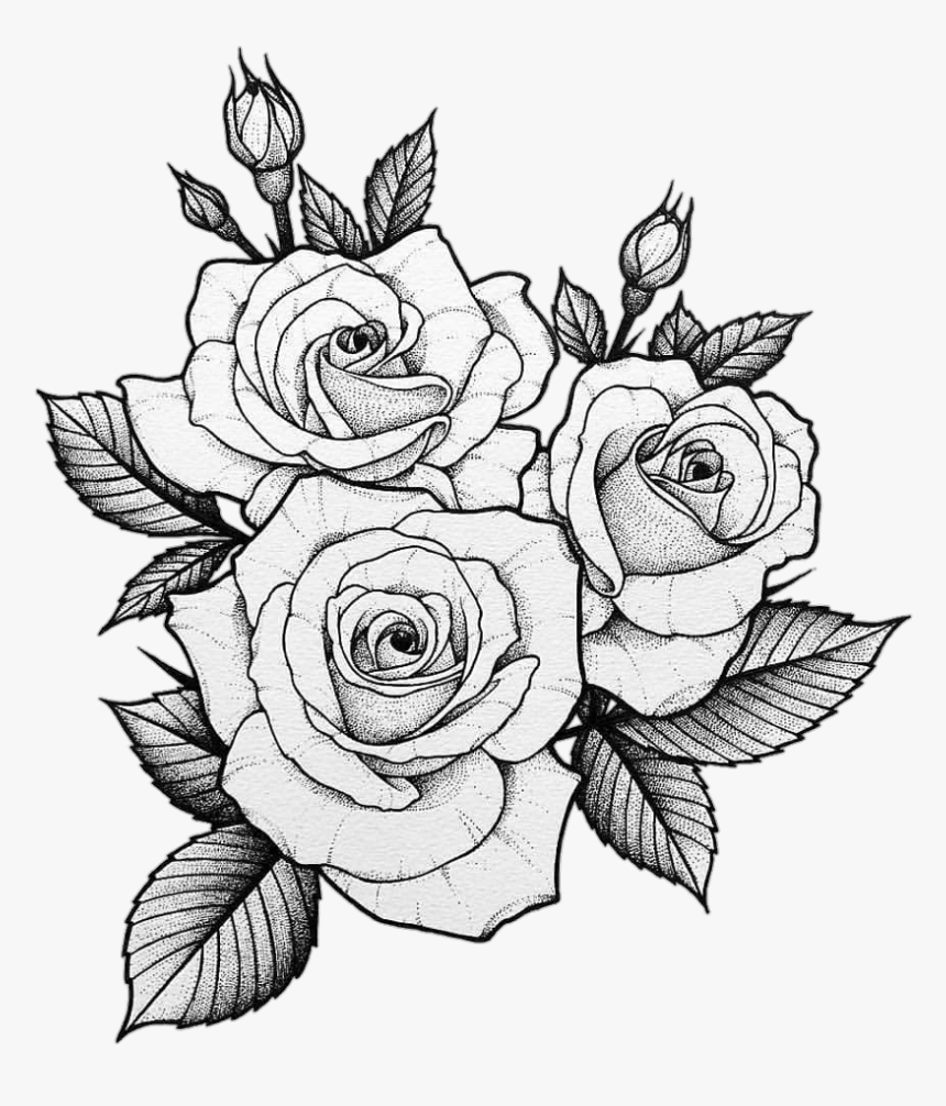 #tumblr #tatto #roses - Drawing Two Roses Tattoo, HD Png Download , Transparent Png Image - PNGitem