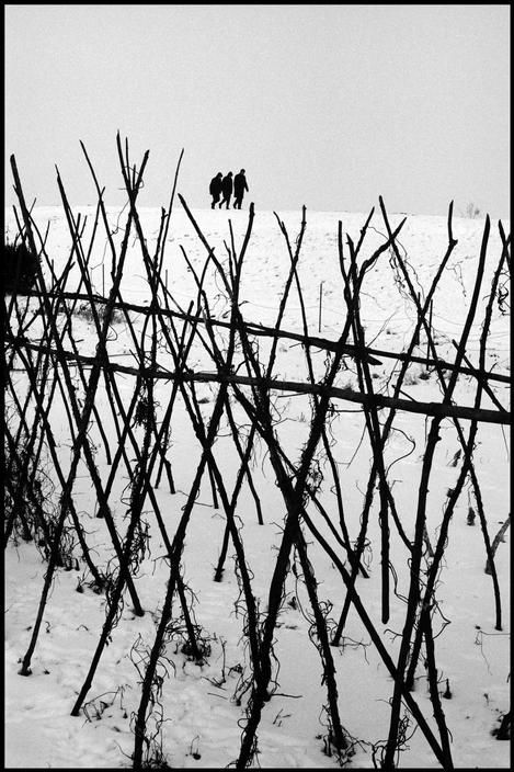 Leonard Freed. NETHERLANDS. 1964. Winter in Holland.