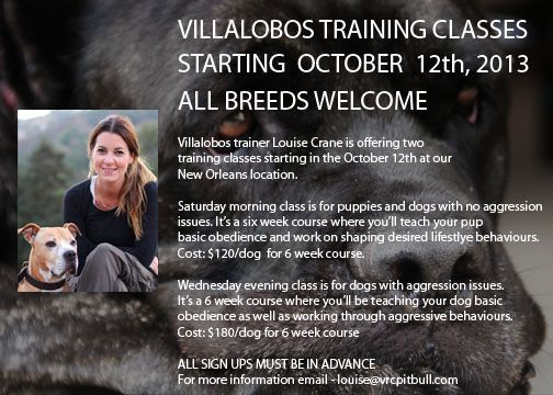 Training Classes Coming Soon Villalobos Rescue Center Training