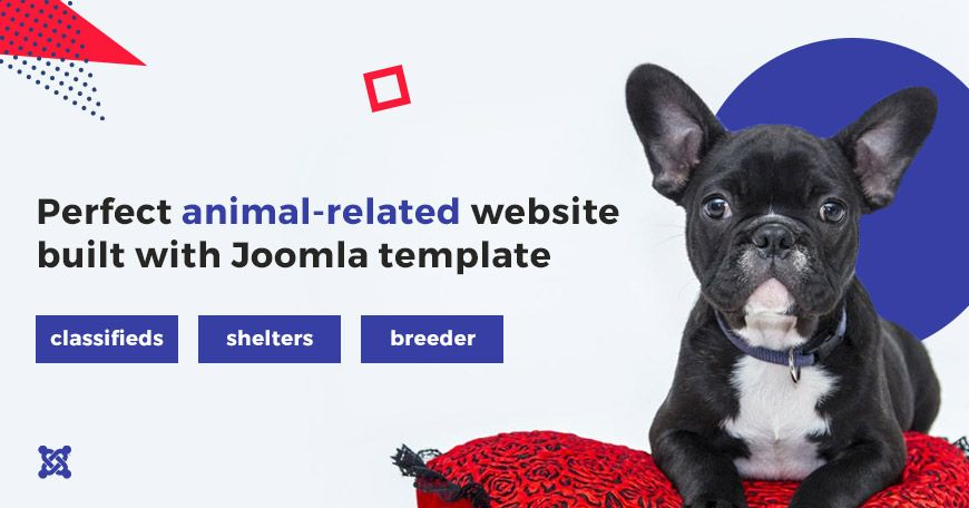 3 Types Of Animal Websites That You May Build With This Joomla Template Dog Websites Dog Training Come Animals