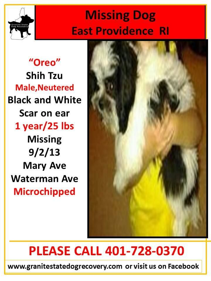 Missing In Ct Ri Ny Granite State Dog Recovery Facebook Losing A Dog Waterman Dogs