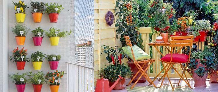 Orto sul balcone terrazzo pinterest - Creare un giardino sul balcone ...
