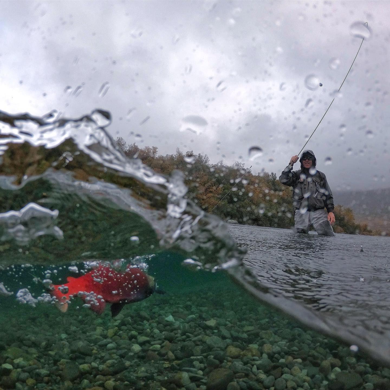 Do You Like To Travel For Fishing In 2021 Fishing Trip Fishing Guide Oregon Fly Fishing