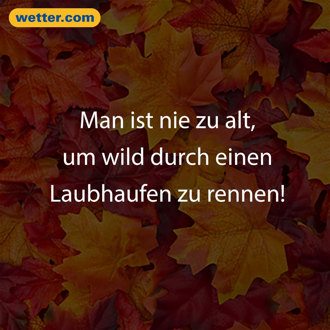 Das Macht Den Herbst Ja So Schön Wie Das Wetter Im