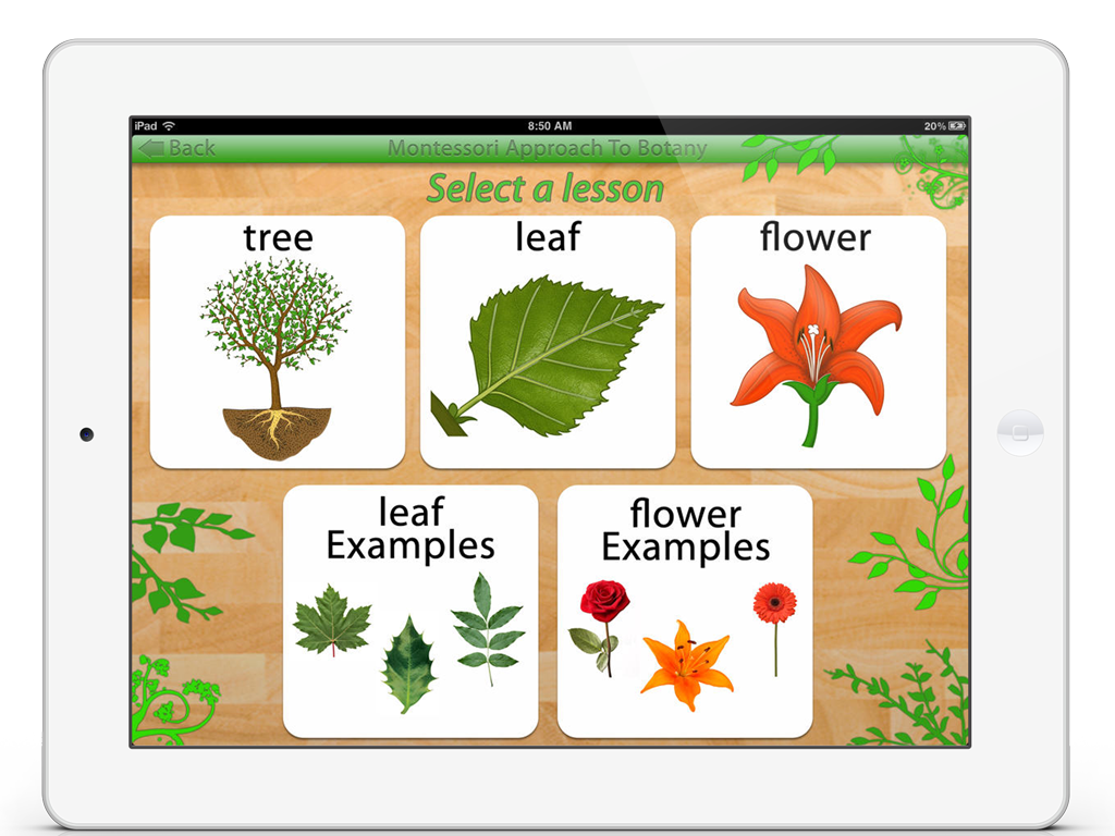 Parts Of Plants App By Mobile Montessori