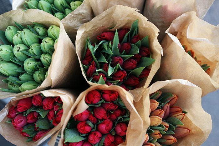 flower shopping at inbloom, uudenmaankatu, helsinki