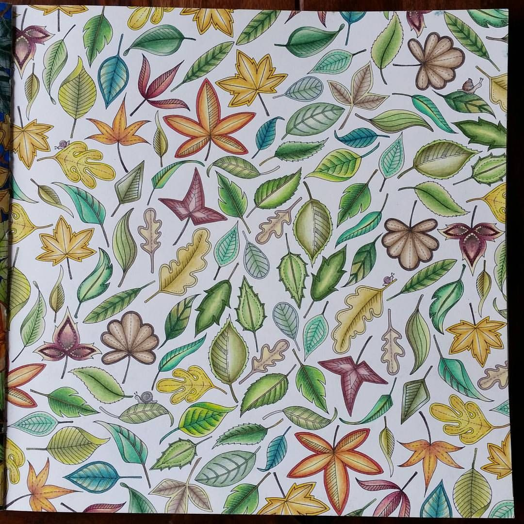 Johanna Basford sells million copies of Secret Garden colouring-in ... | 1080x1080