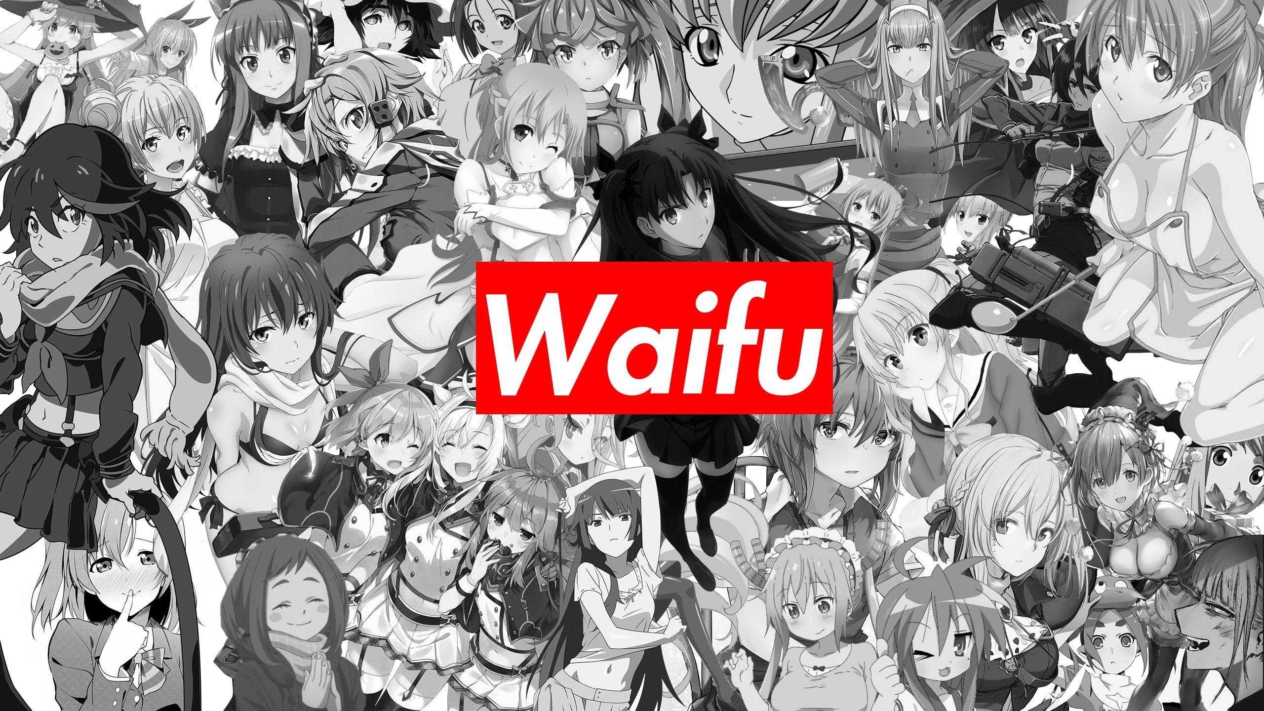 #waifu2x No waifu, no laifu #anime anime girls #monochrome ...