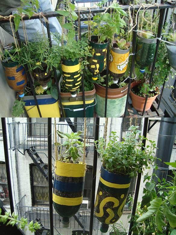 Diy plastic bottle herb hanging garden for Garden design using plastic bottles