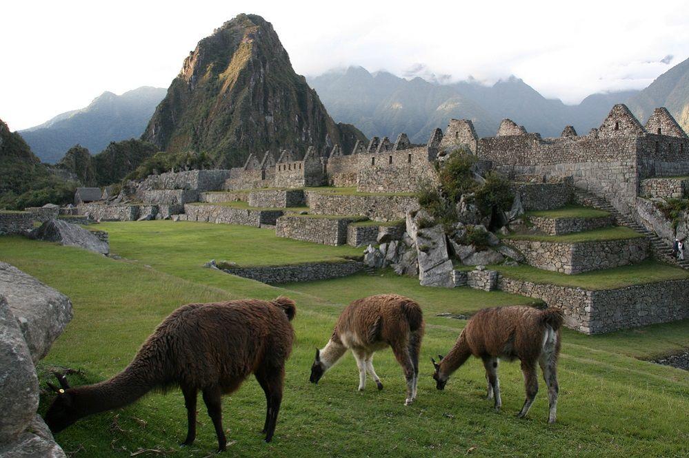 MachuPicchu    #VoyagesPassionTerre                                              ®Coltur