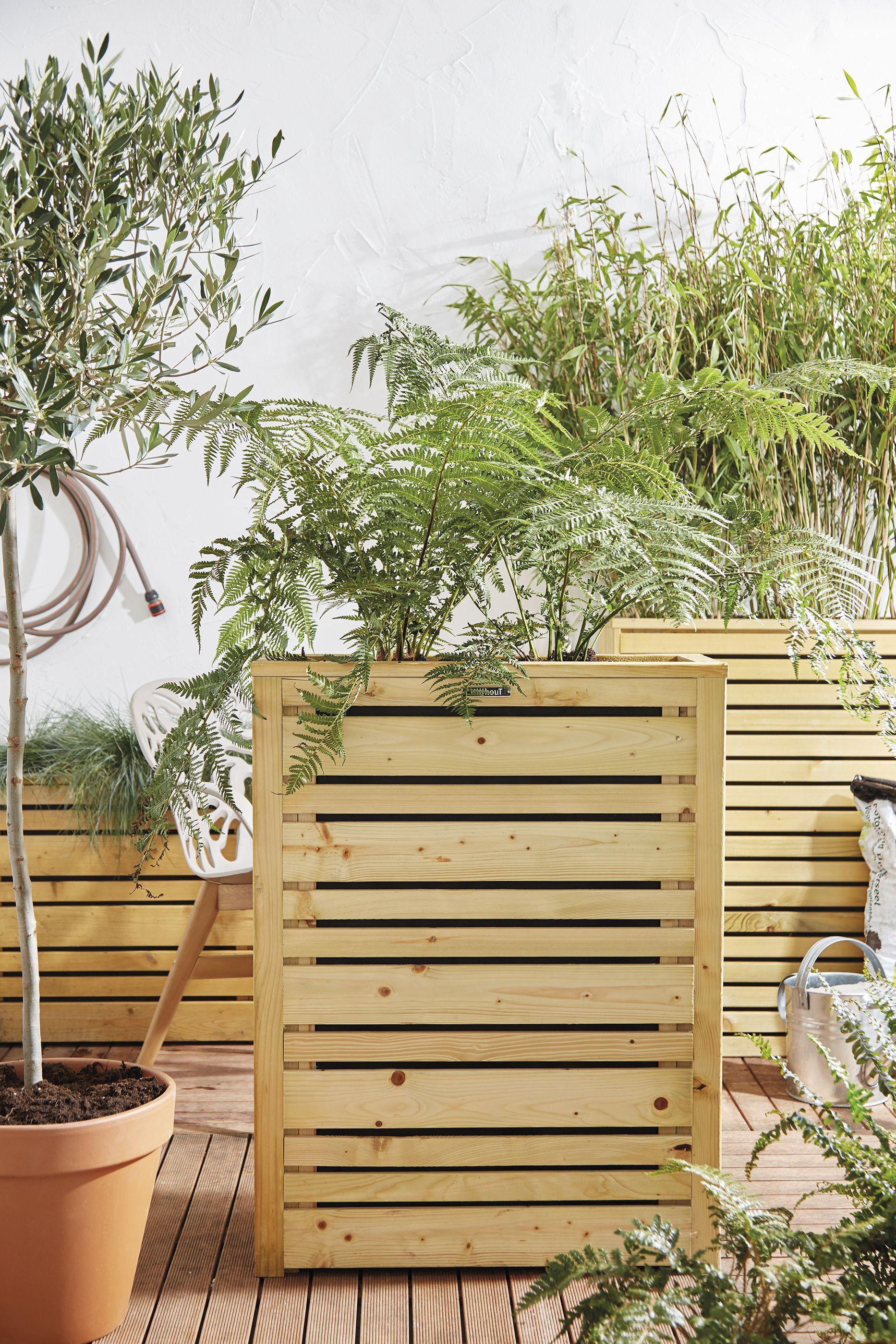 Houten Plantenbak Intratuin.Houten Plantenbak Voor In De Tuin Intratuin Planten Plants