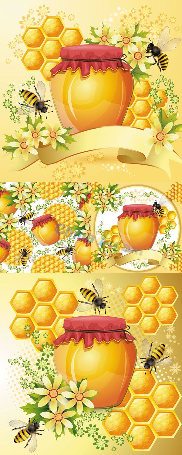 Bees and honey vector background Vector background, Bee