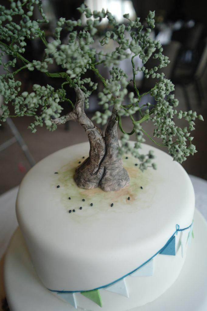 Fondant Olive Tree Woodland Cakes Pinterest Woodland