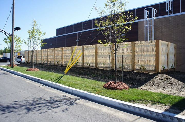 Superb debarked willow fence