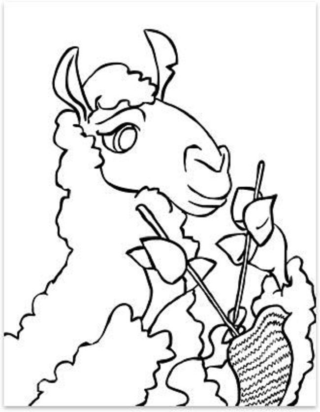 Llama Flower Coloring Pages