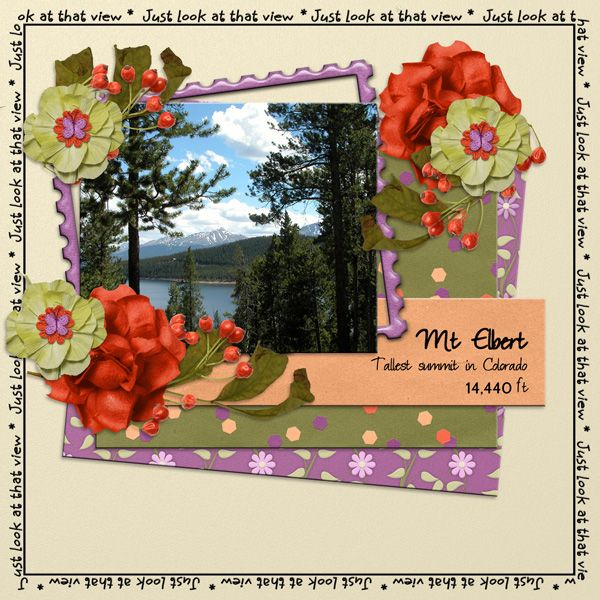 PattyB Scraps PICTURESQUE Mixology packs  http://www.godigitalscrapbooking.com/shop/index.php?main_page=index&cPath=234_413_440&sort=20a&filter_id=149&alpha_filter_id=0