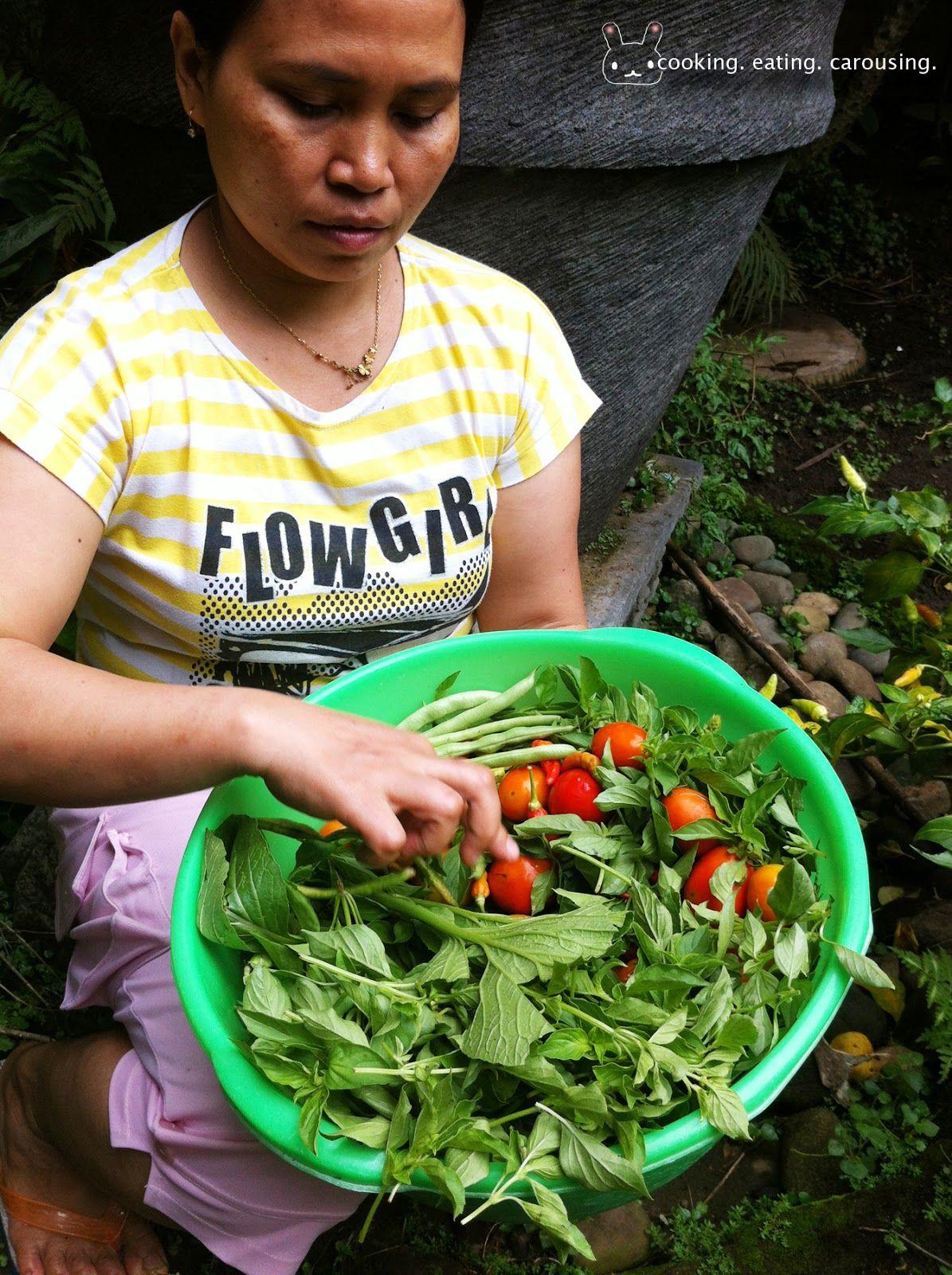 mbak mi's organic garden Organic gardening, Organic