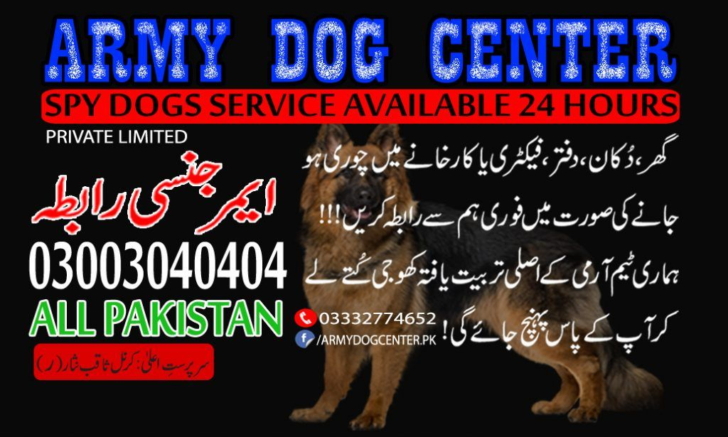 Army Dog Center Rawalpindi Faisalabad Karachi Lahore Okara Multan In 2020 Army Dogs Army Dogs