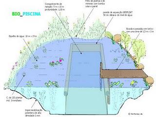 Piscinas_biologicas2 representantes BR