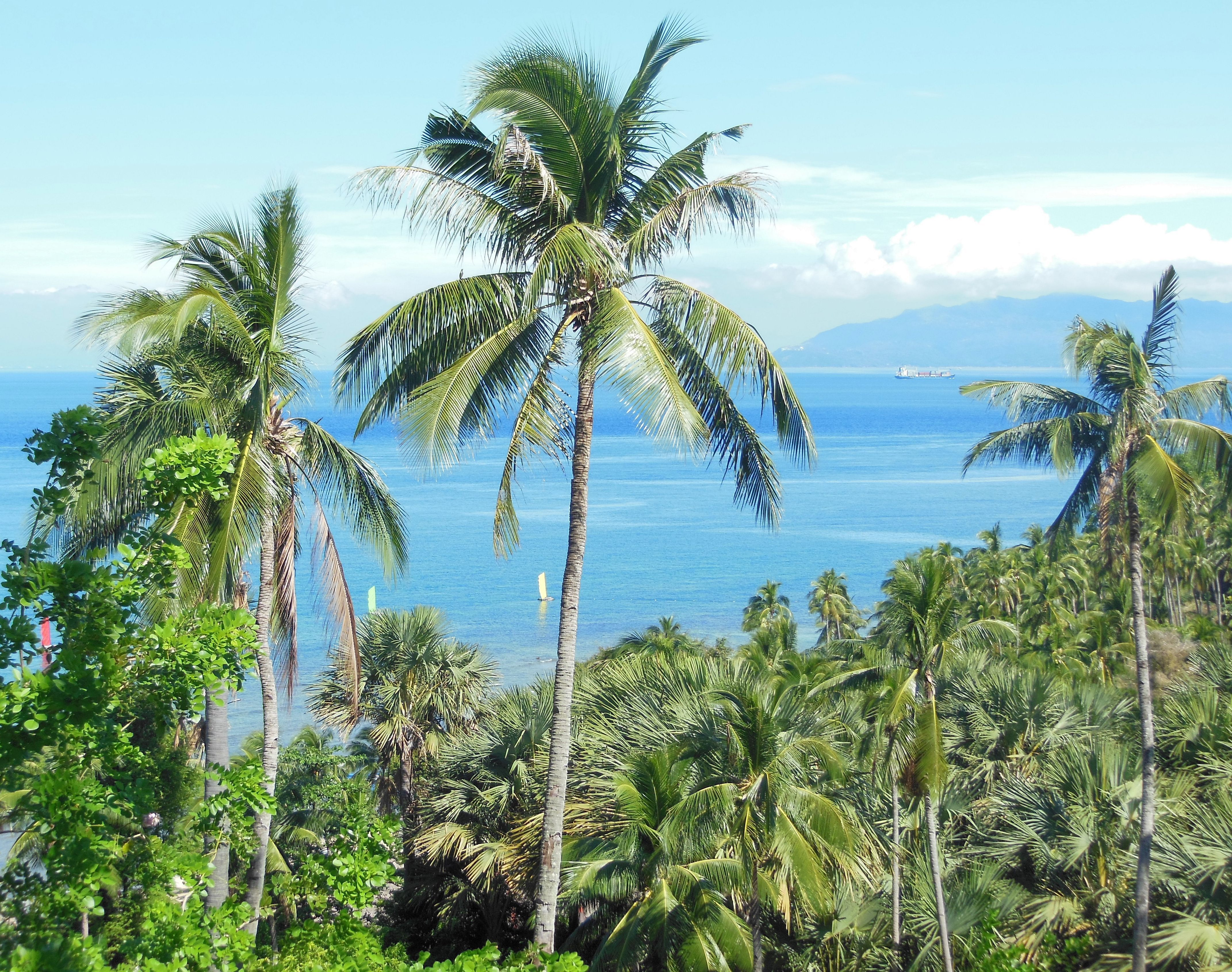 Views from Coco Beach resort, Philippines