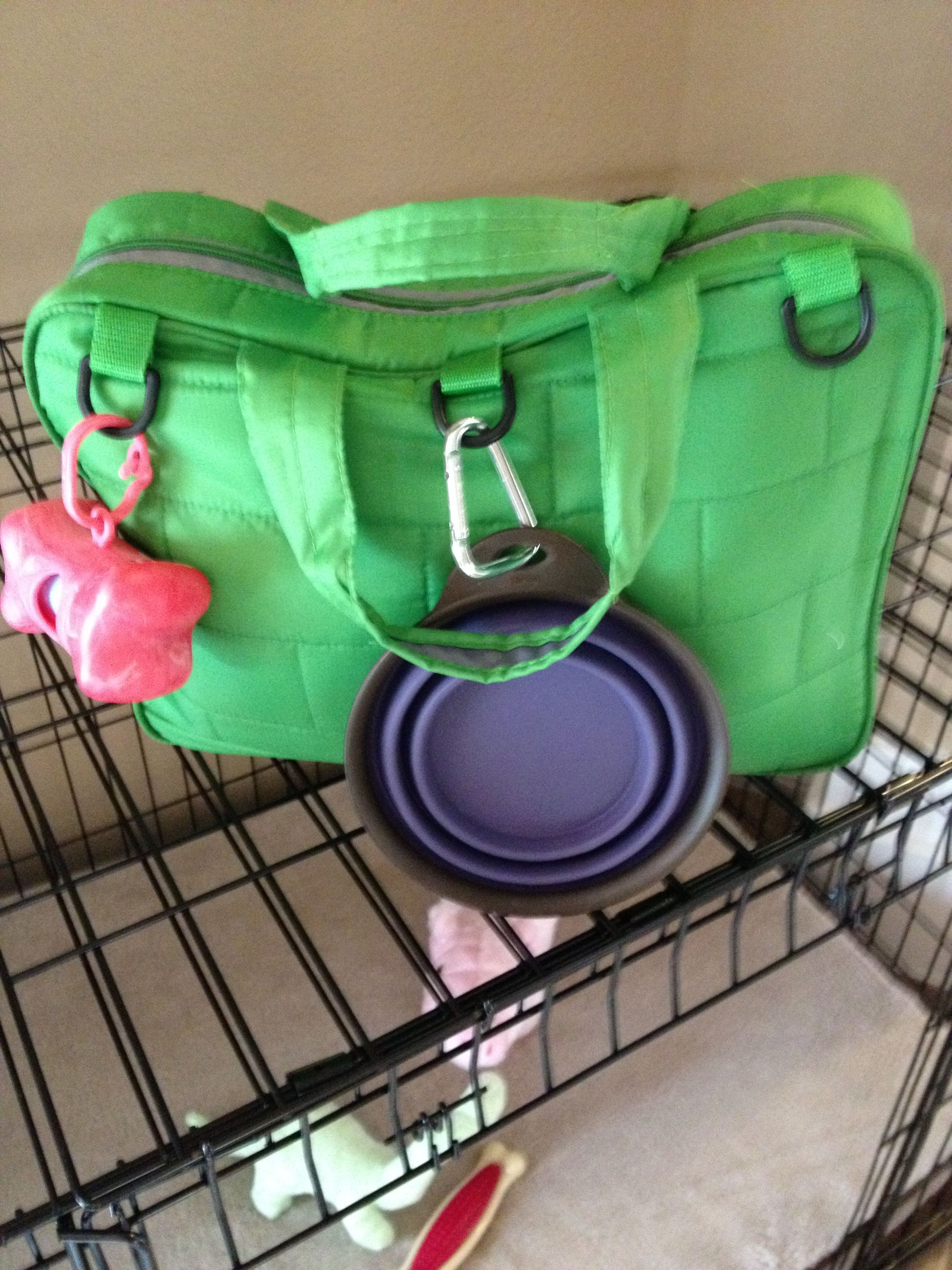 Every Dog Owner Needs A Doggie Diaper Bag Fill With Water Collapsing Bowl Bags Leash Treats And Favorite Toy