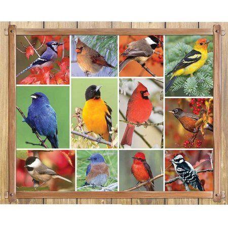 Springbok Songbirds 1,000-Piece Jigsaw Puzzle