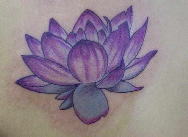 Purple Lotus Inspiring Ink Purple Lotus Tattoo Lotus Tattoo
