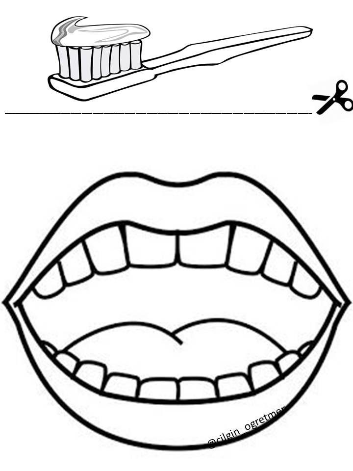Dis Fircalama Dental Health Crafts Kindergarden Activities Dental Health