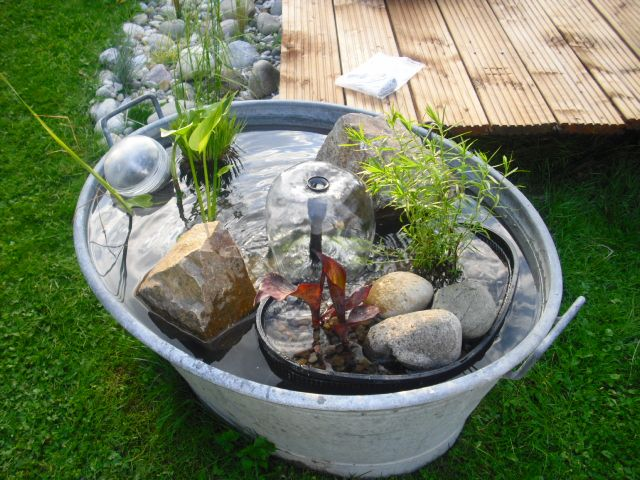 galvanized tub water garden tin bucket water garden container water garden with a small. Black Bedroom Furniture Sets. Home Design Ideas