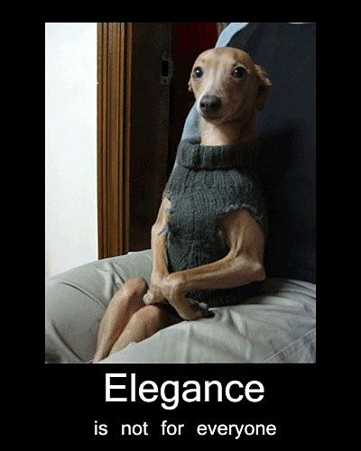 Elegance is not for everyone.