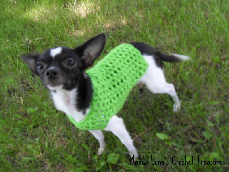 XXS any occasion dog sweater « The Yarn Box The Yarn Box | Crochet ...