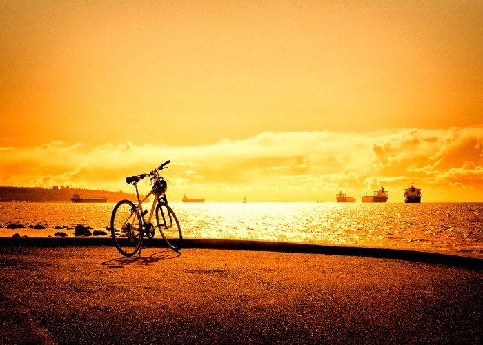 Best Hybrid Bikes Under 500 Bicycle Wallpaper Scenery Sunset
