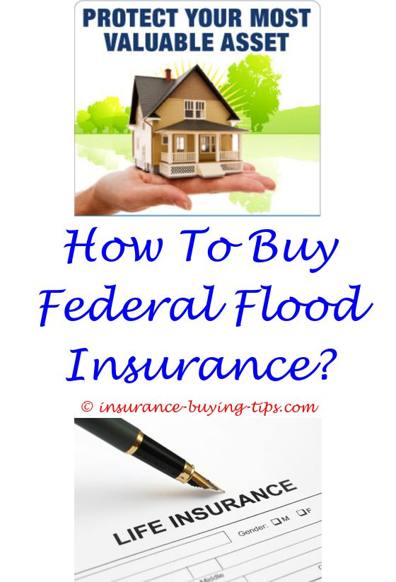 Flood Insurance Quote Magnificent Does Getting A Car Insurance Quote Hurt Your Credit  Buy Health . 2017